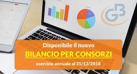 Nuovo Bilancio per Consorzi per esercizio annuale al 31-12-2018